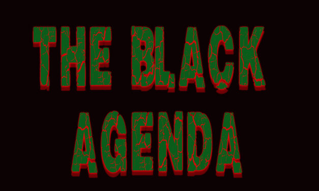 The Black Agenda-An Intv w/ Community Elders about Next Steps